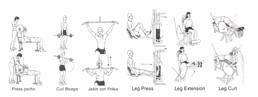 ejercicios-test-fuerza
