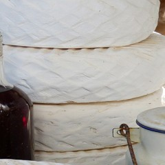 Acido linoleico conjugado (CLA)