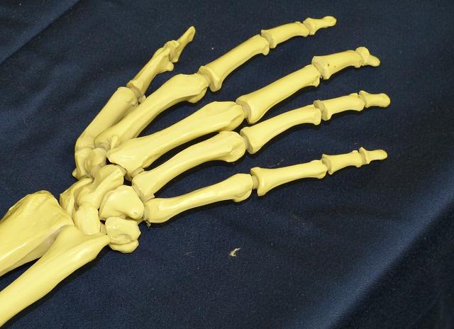 Cuidado con enfermedades osteo-articulares en la menopausia