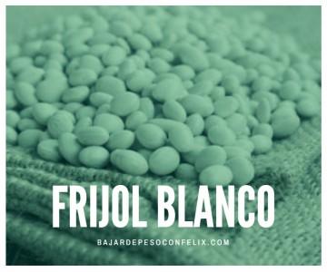 phaseolus-vulgaris-comprar